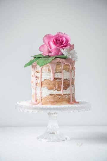 ally's cake1