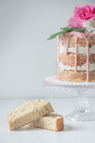 ally's cake4
